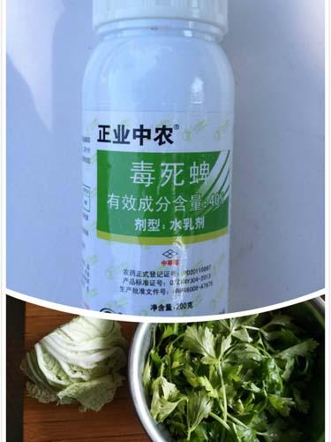 芹菜叶子上的毒去世蜱超标