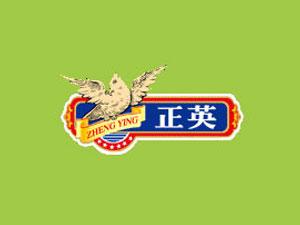 揭阳市正英食品有限公司