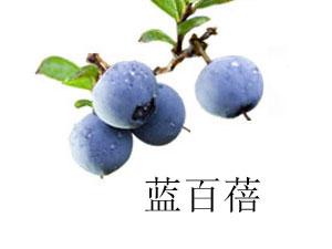 大興安嶺百盛藍莓科技開發有限公司