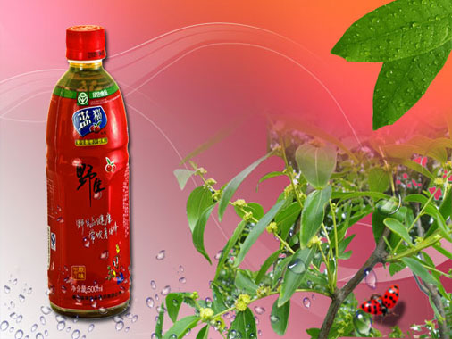 蓝猫  原味型野生酸枣汁