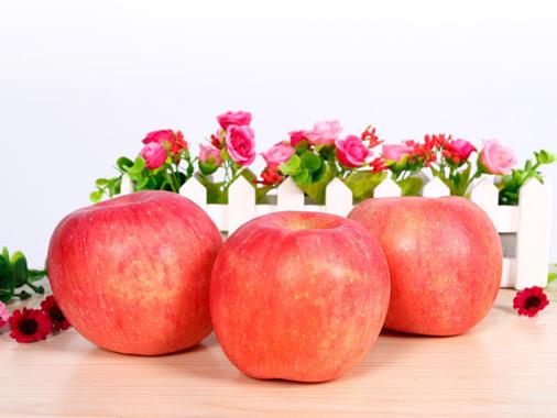 海發75mm新年紅富士蘋果