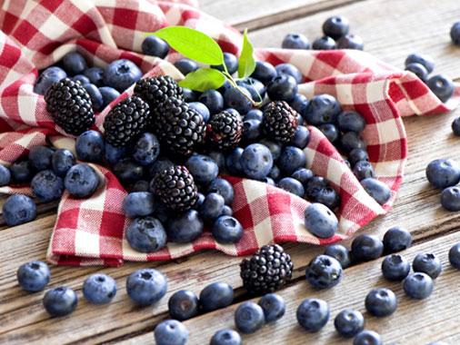 東方超捷 速凍藍莓