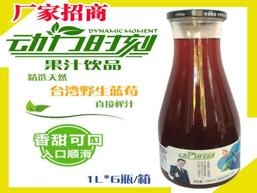 动力时刻野生蓝莓汁饮料