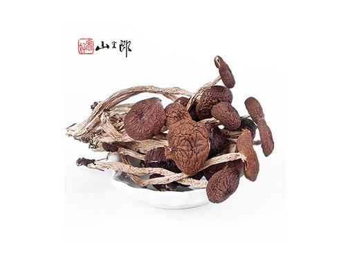 山里郎茶樹菇干貨特級