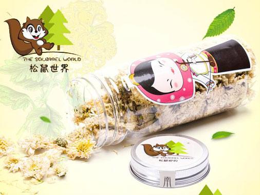 松鼠世界黄山贡菊